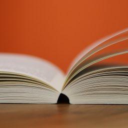 Publikation erschienen: Spielend lernen! Computerspiele(n) in Schule und Unterricht